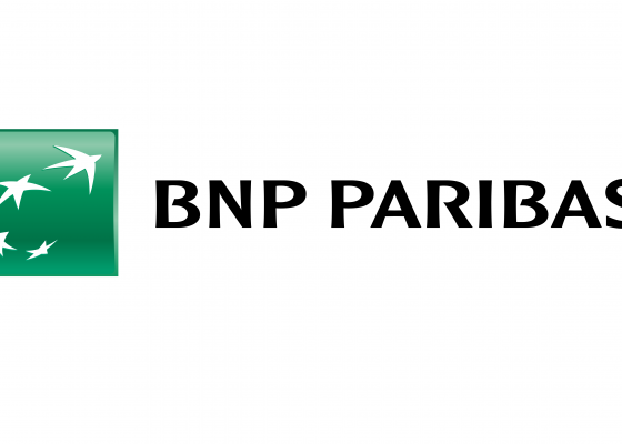 BNP Paribas Nordic Investment Banking Internship
