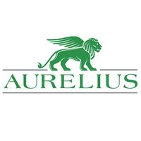 Aurelius – Private Equity Intern, Stockholm